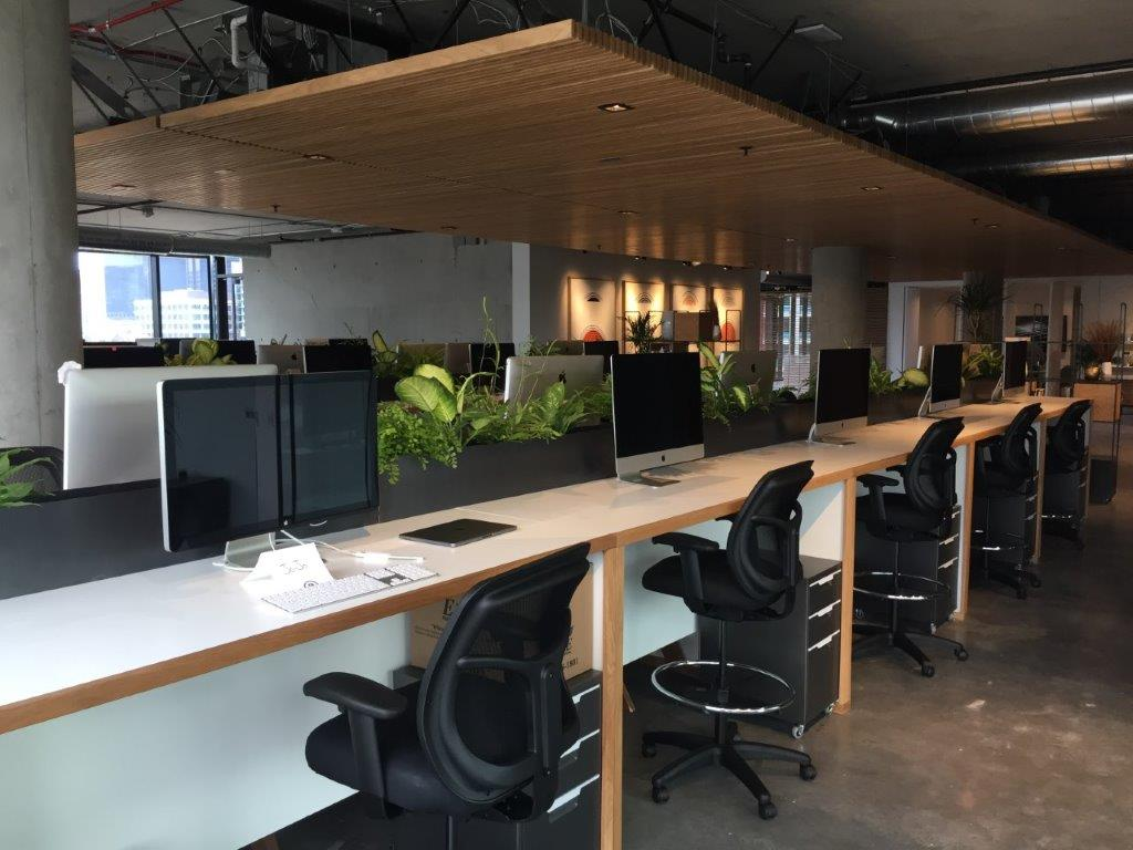 Creative Office Space Complete for First Tenant at Block D in Downtown San Diego's Makers Quarter