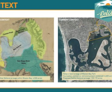 c-3-presents-a-wild-wilder-and-wildest-vision-to-restore-mission-bay-wetlands